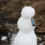 Snowman & Dude