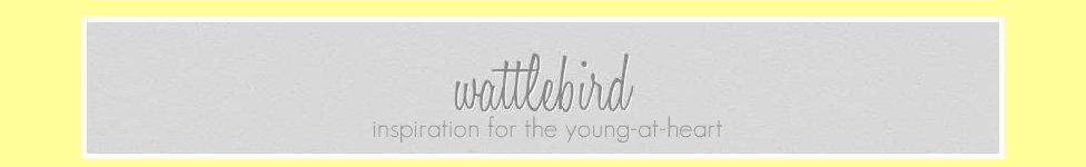 wattlebird