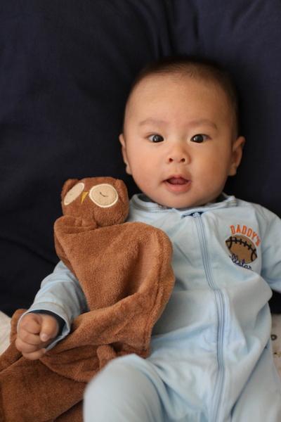 Stylish Little Baby Boy To Be Sandyalamode