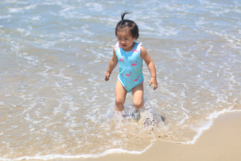 Olivia + Ocean flamingo swimsuit