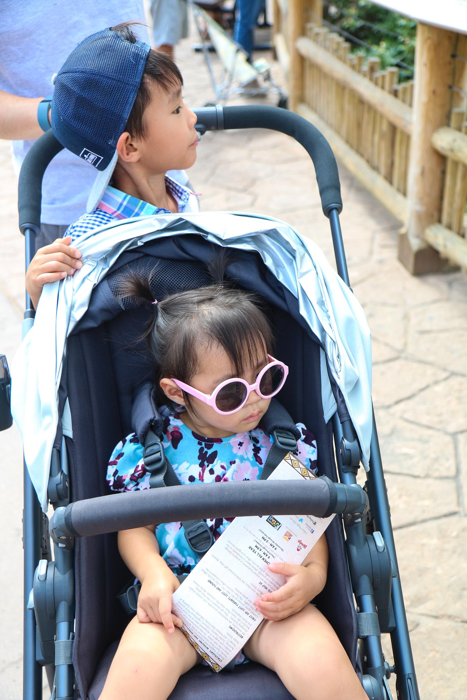 Best stroller for two kids
