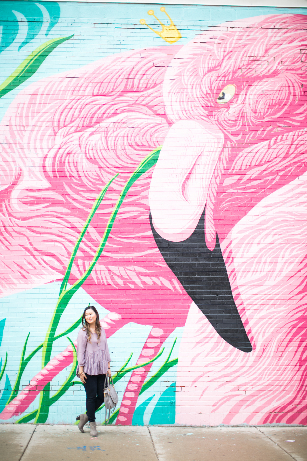Chicago flamingo wall