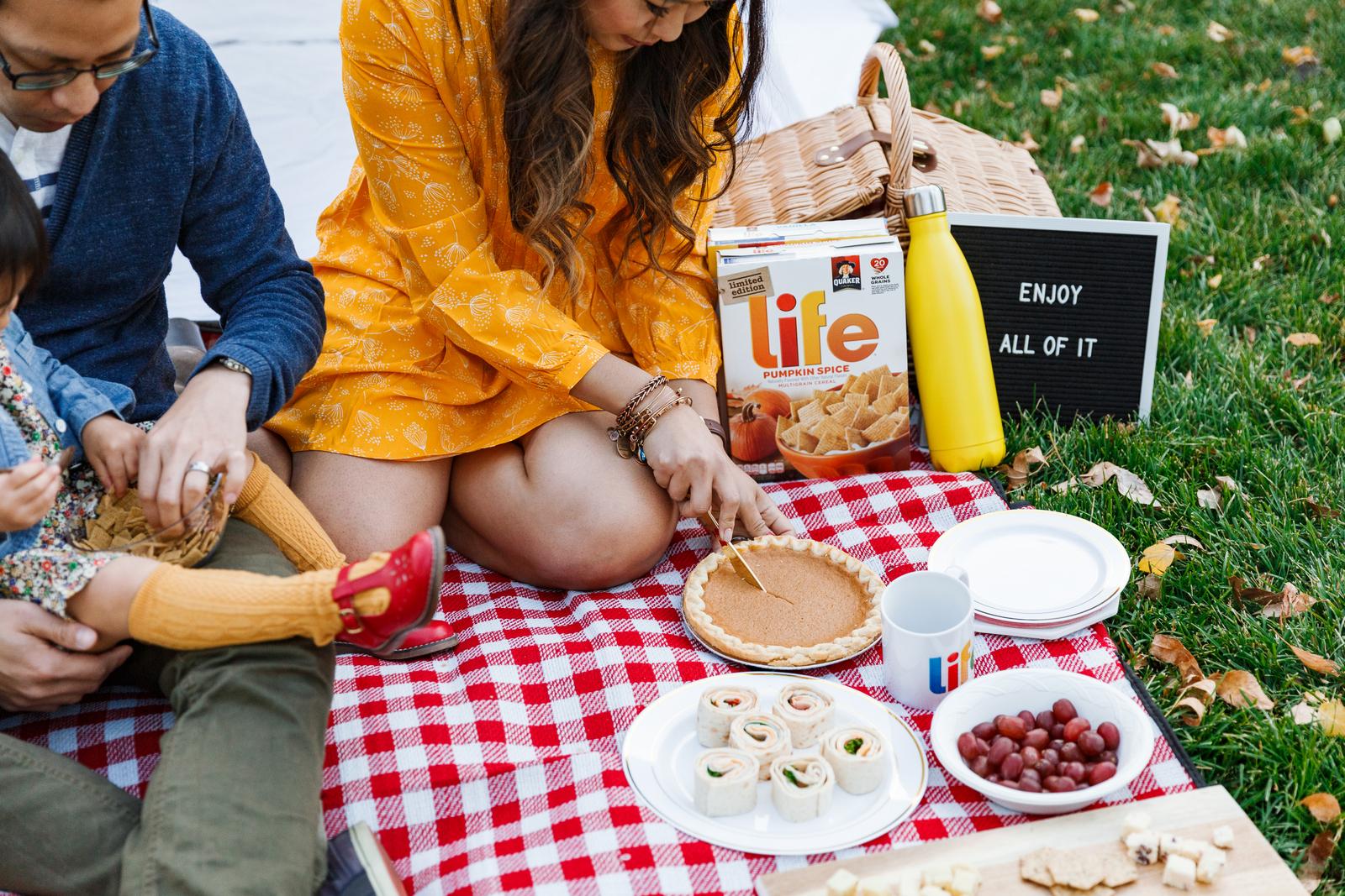 Pumpkin pie at a picnic