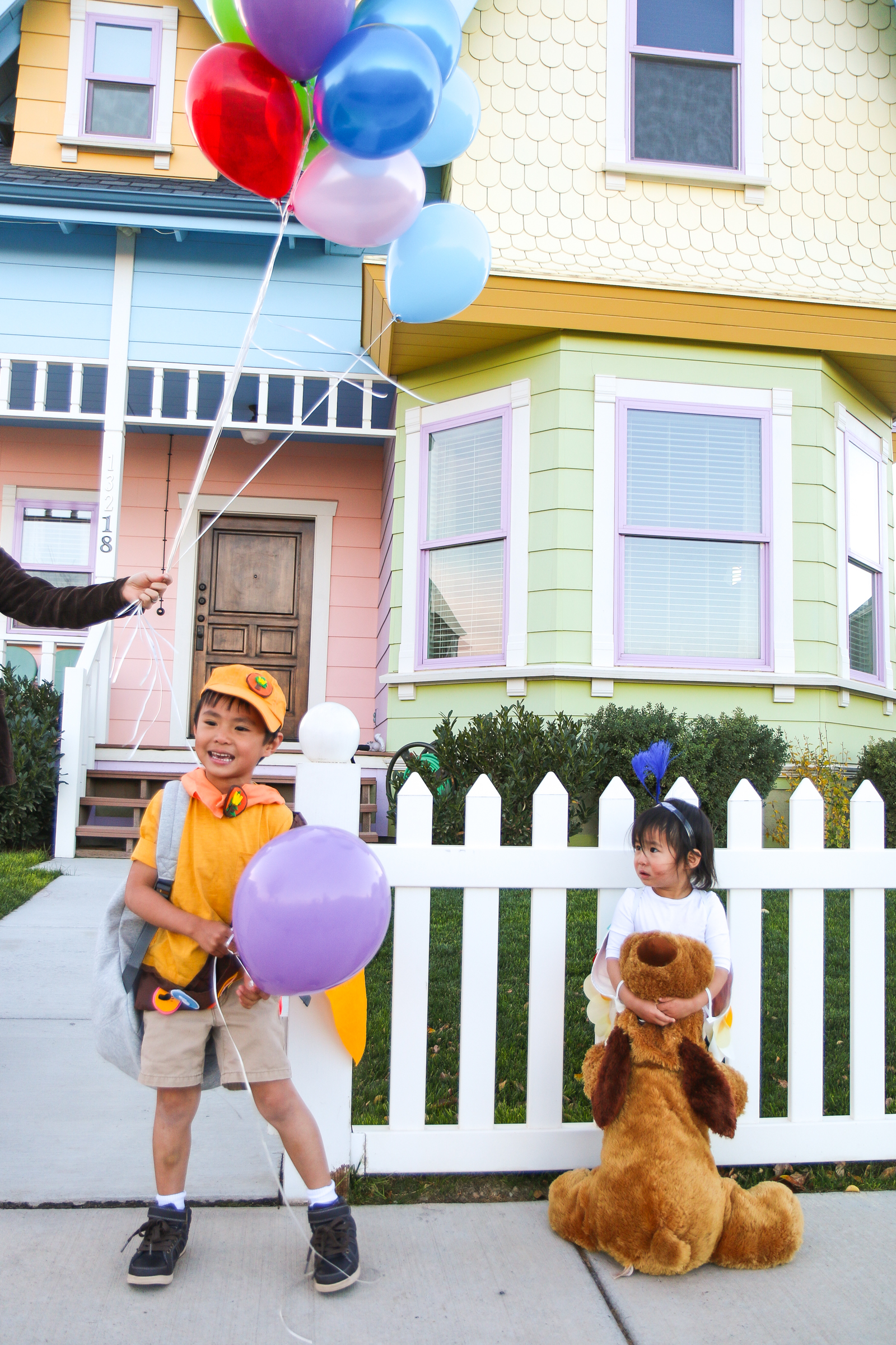 Up family Halloween costumes