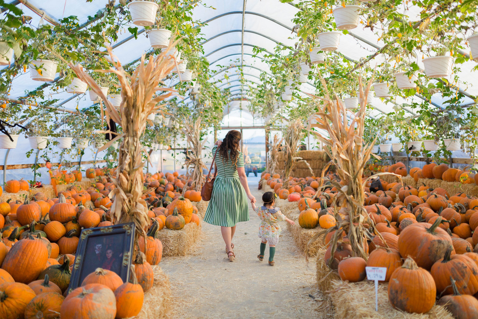 Mommy and Me Outfits by Sandy A La Mode: Orange and Green Fall Outfits