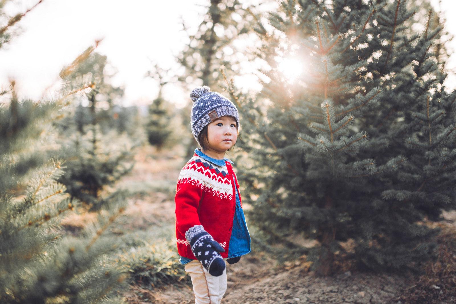 Osh Kosh B'Gosh Holiday Outfits