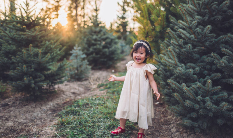 Little Girl's Holiday Outfit