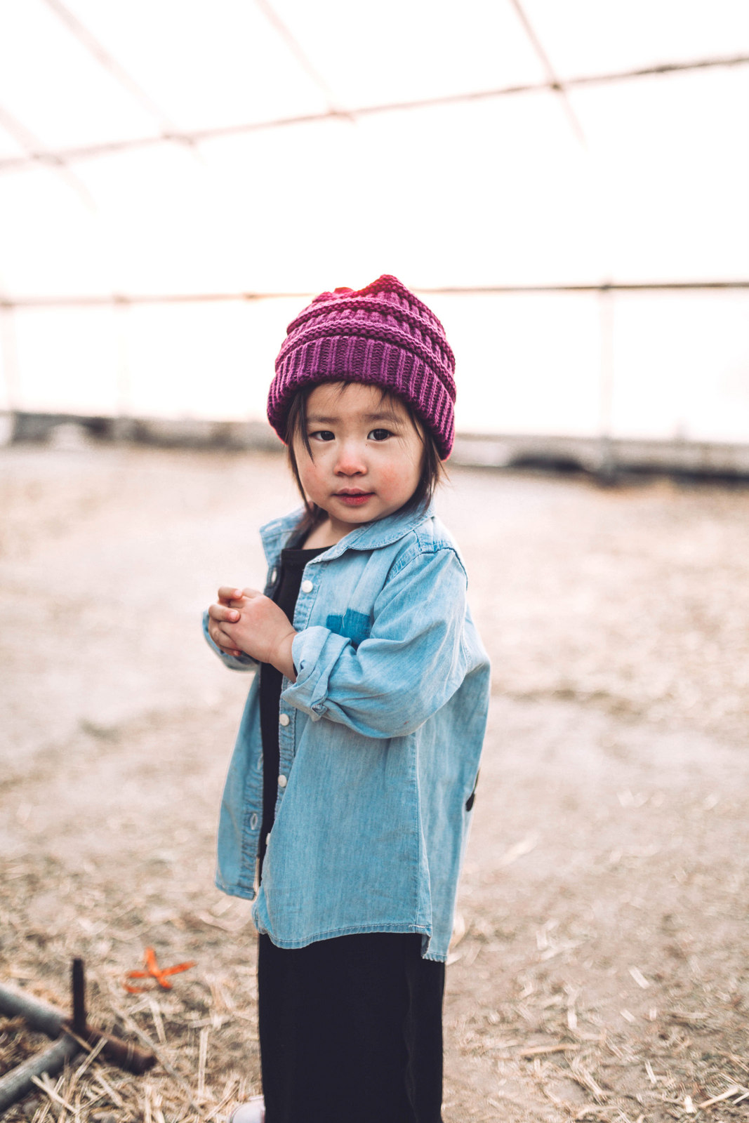 Little Toddler Outfit