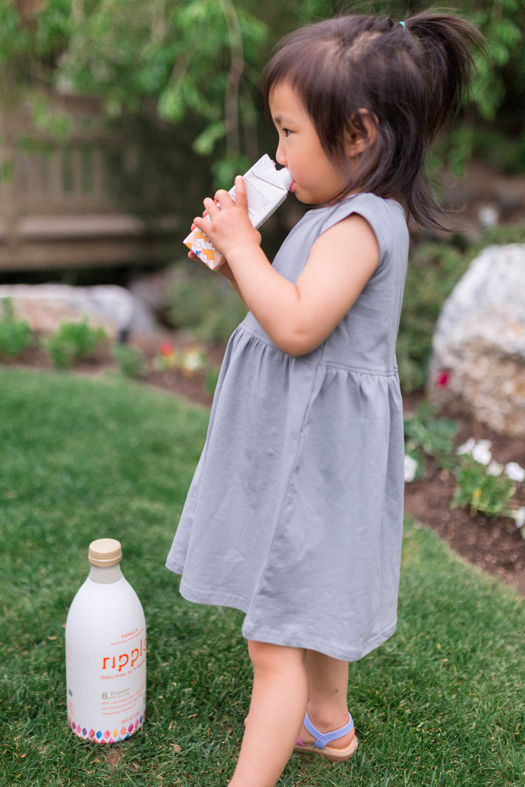 We Tried Pea Milk - Here's Our Review by popular blogger Sandy A La Mode