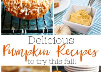 11 Delicious Pumpkin Recipes To Try This Fall!